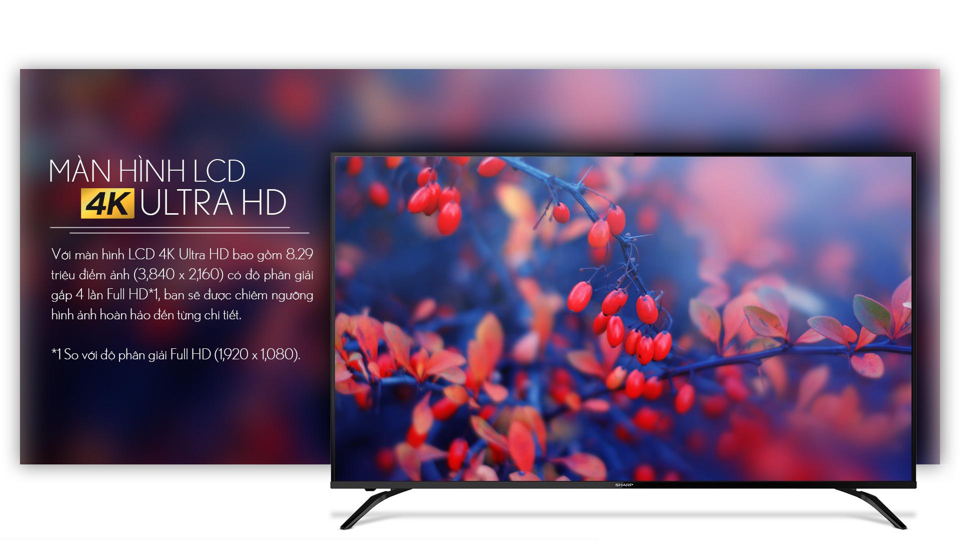 TV-4T-C60AL1X_03